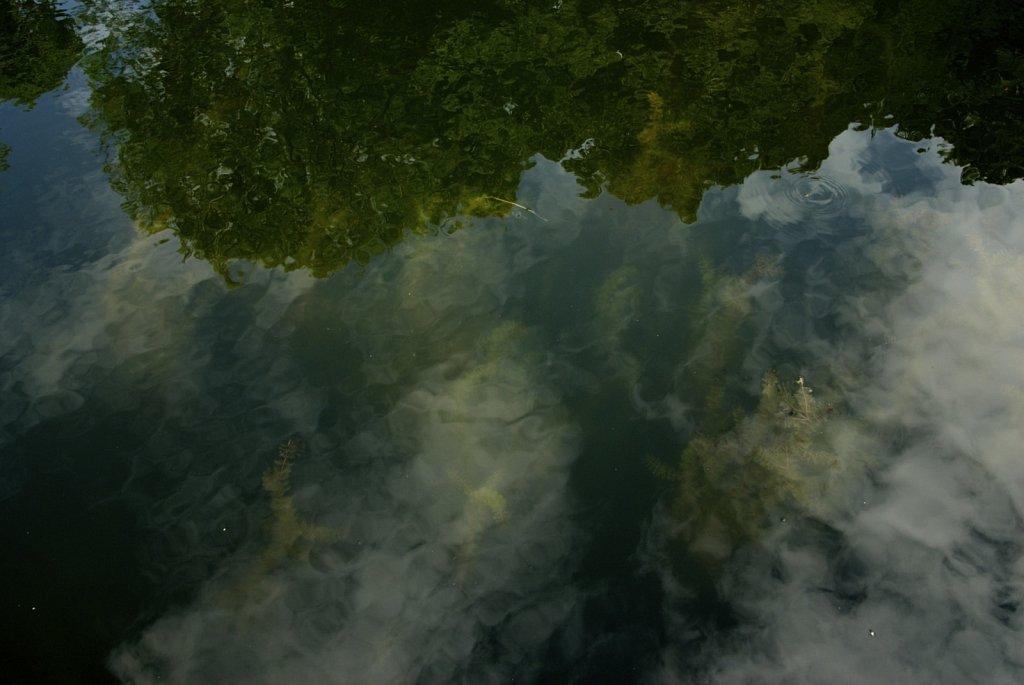 5water.jpg